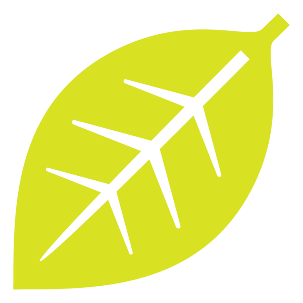 Transparent Thanksgiving Yellow Line Logo for Fall Leaves for Thanksgiving