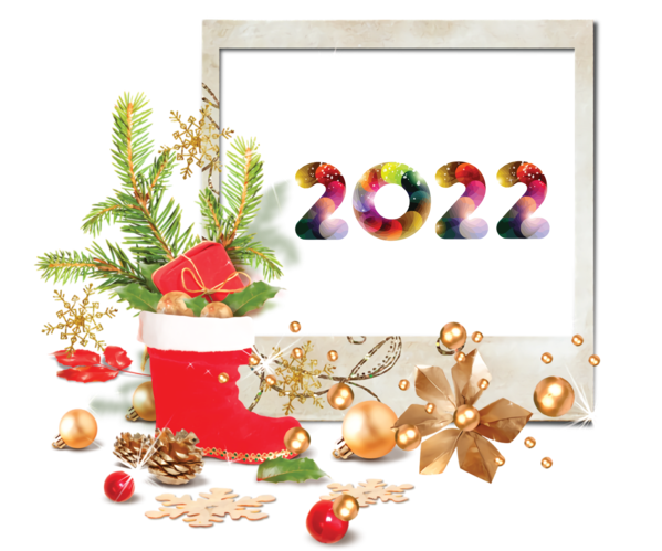 Transparent New Year Bauble Natural food Christmas Day for Happy New Year 2022 for New Year