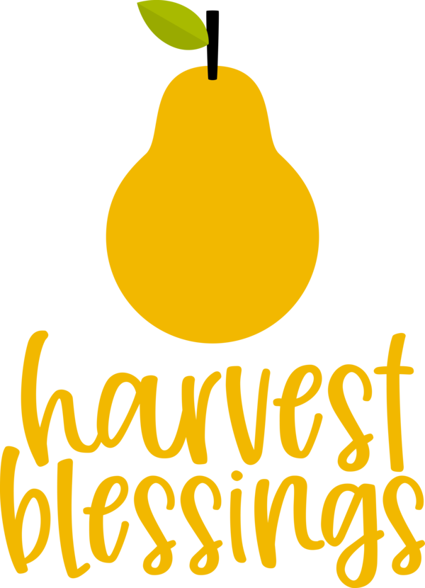 Transparent thanksgiving Plant Pear Yellow for Harvest for Thanksgiving